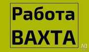 Требуются Строители на Вахту в С-Петербург из Борисова